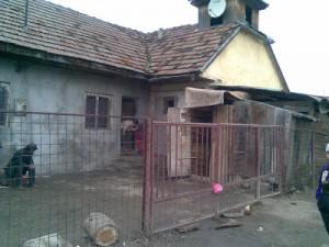 Romanian Orphan Charity